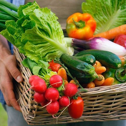 Nutrition Prevention | DR. HAGER